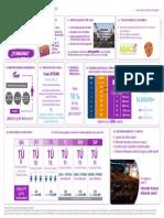 Infografia Presentacion de Negocio flash mobile