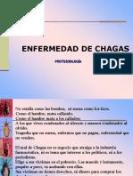 Chagas Cajamarca