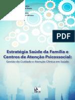 Estrategia Saude Da Familia e Centros de Atencao Psicossocial - eBook