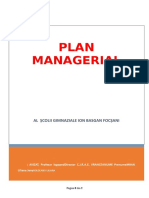 Plan Managerial Logopezi (1)