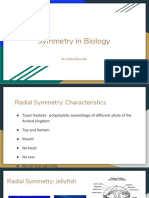 Ashlen Mezrahi_Symmetry in Animals