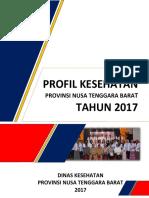 Profil Kesehatan 2017