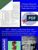 Estrutura e Replicao Do DNA