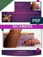 Escabiasis y Larva Migrans