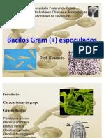 Bacilos Gram Positivos Esporulados