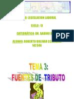Fuentes Del Tributo