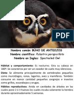 Letreros de Animales Del Serpentario