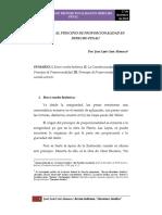 El Principio de Proporcionalidad en Derecho Penal