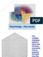 Psychology Key Words