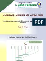 moluscos.pdf
