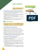 2.hongos_plantas.pdf