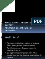4.1. Mobil Fetal, Prezentatii, Pozitii