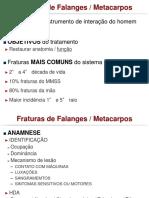 Fx Falange e Metacarpo-1
