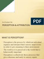 Perception & Attribution
