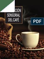 Evaluación Sensorial Del Café