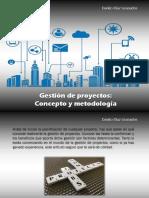 Danilo Díaz Granados - Gestión de proyectos