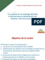Sesión 1 Estrategia Mundial de ALNP e IHAMN