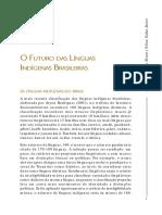 Futudo Das Linguas Indigenas Brasileiras