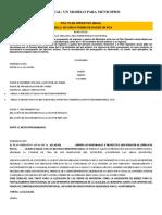 EL PLAN OPERATIVO ANUAL.docx
