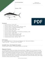 FAO-Fishes-tuna