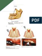 96551723-Anestesia.docx