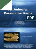 Carlos Michel Fumero - Los Animales Marinos más Raros