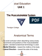 musculoskeletalsystem-120308163748-phpapp01