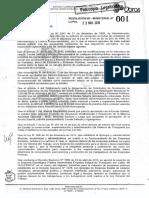 Resolucion 001 Nueva Estructura 1