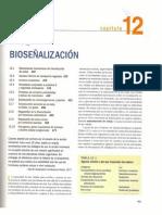 70905475-Lehninger-Capitulo-12.pdf