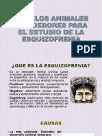 animales roedores para el estudio de la esquizofrenia