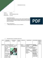 Programacion Anual Inicial 2015
