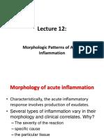 Inflammatory mediators (Lecture)