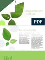 Micronutrientes en Bolívia