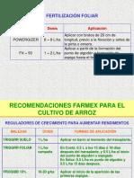- Fertilizacion en Arroz