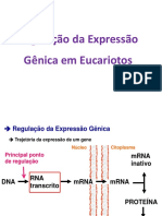 05_Regulacao_eucariotos