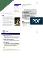 guc3ada-habilidad-verbal-17-abril.pdf