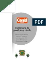 Libro Problemario Precalculo y Calculo (1)