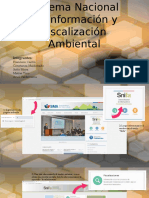 Sistema Nacional de Información y Fiscalización Ambiental