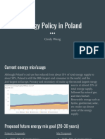 cindy wang poland energy policy