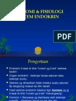 Anfis Endokrin Ppt Fix