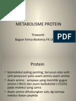 219613 Metab Protein