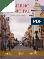 El Gobierno Municipal en Mexico