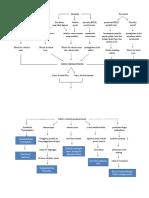Pathway Sepsis Neonatal