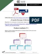 Producto académico N°1 - DESARROLLO PSICOLOGICO PERSONAL II