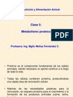 Clase_5_Metabolismo_Proteinas_final(4).ppt