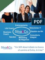 Consultoria Silva Co