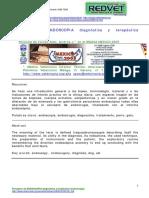 endoscopia vet.pdf