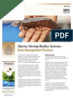 Arine Shrimp Biofloc Systems- Basic Management Practices