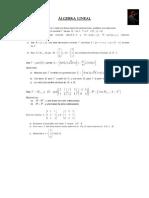 Álgebra Lineal Repaso