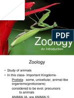 intro to zoo - ppt